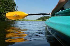 Go kayaking in Kejimikujik National Park