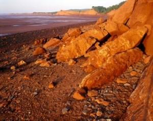 Cliffs at Cape Blomidon Provincial Park