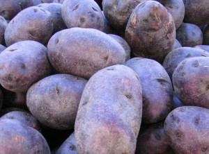 Did the bluenoser nickname come from blue potatoes?