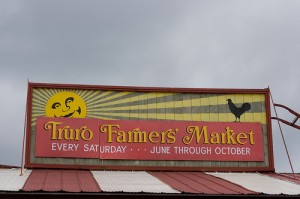 The Truro farmers market - a nice place to go on summer Saturdays.