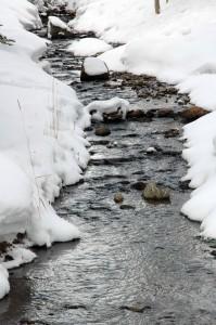 A winter brook