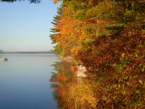 Fall colours over a Keji lake.