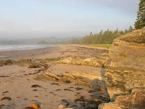 Rissers Beach in the early morning.